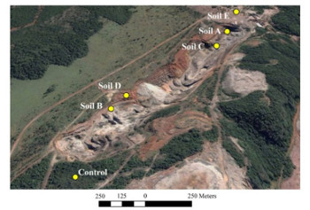 apresenta uma mineração e indica pontos com contaminação de metais pesado.