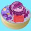 ícone que dá acesso à oficina sobre citologia elaborada pelos técnicos do crte