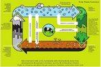 Ciclo que consiste na fixação do elemento carbono pelos seres autótrofos por meio da fotossíntese ou da quimiossíntese. Palavras-chave: gás carbônico, assimilação, combustíveis fósseis, respiração, fermentação. Obs.: imagem também disponível em PDF <br/><a href=&quot;http://www.biologia.seed.pr.gov.br/arquivos/File/imagens/ciclocarbono.pdf&quot; target=&quot;_blank&quot;>Acesse PDF<a/> <br/><br/> Palavras-chave: ciclos biogeoquímicos, carbono, orgânico, ecologia