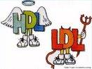 O colesterol é encontrado nas células do corpo que precisa deste para fabricar hormônios, vitamina D e substâncias que ajudam na digestão dos alimentos. O colesterol circula pela corrente sanguínea através de lipoproteínas, que podem ser LDL e HDL. A LDL, lipoproteína de baixa densidade, é conhecida como o mau colesterol. Em níveis altos no organismo ocasiona acúmulo nas artérias. A HDL, lipoproteína de alta densidade, é conhecida como o bom colesterol. Tem a função de transportar colesterol de partes do corpo ao fígado, que o remove do organismo. <br/><br/> Palavras-chave: lipídeos, gorduras, obesidade, infarte do miocárdio, arteriosclerose, hormônios sexuais, vitamina D.