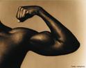 Nome genérico que um músculo recebe porque possui duas &quot;cabeças&quot; (ou partes iniciais). <br/><br/> Palavras-chave: Sistema Muscular, Corpo Humano, Movimento, Educação Física, Comportamento