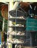 Rede - Local de crescimento ou engorda das sementes de ostras no mar. <br /> Palavra-chave: Zoologia, Ostras, Mar, Rede, Local, Sementes, Crescimento